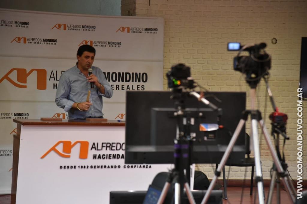 Alfredo S. Mondino