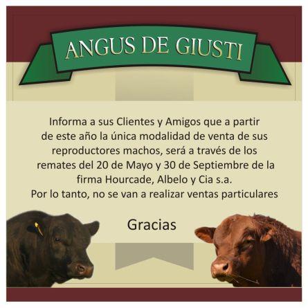 Angus de Giusti