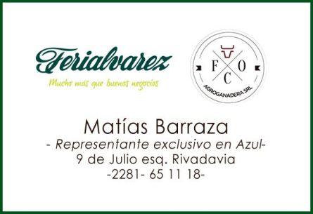 Matias Barraza - Representante de Ferialvarez en Azul
