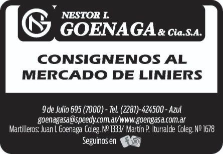 Nestor L. Goenaga Cia Sa