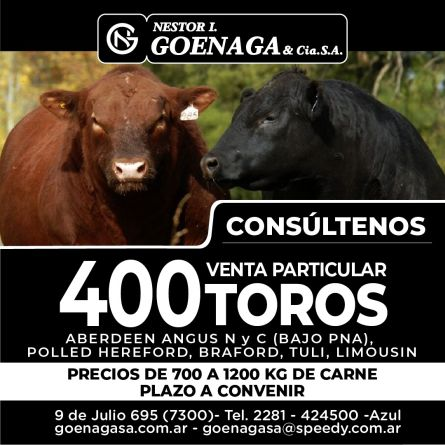 Nestor L. Goenaga - Toros -