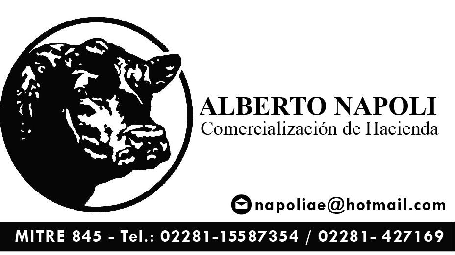 Alberto Napoli